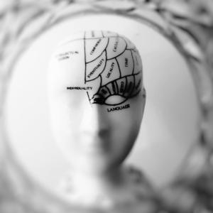 Brain Health from Pixabay